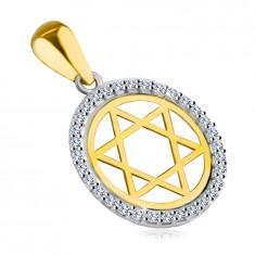 Prívesok zo 14K kombinovaného zlata - Dávidova hviezda v kruhu so zirkónovým lemom