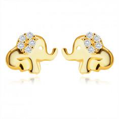 Náušnice v žltom 9K zlate - sediaci sloník s chobotom, ucho zdobené okrúhlymi zirkónmi